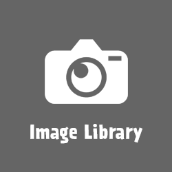 icon-image-library-250px