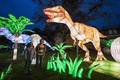 WMSP Dinosaur Lantern 02 copy