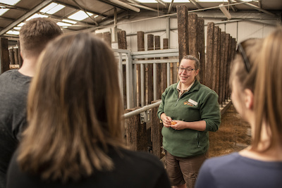 There will be chance to 'Meet the Keeper' at daily talks during Rhino Week.