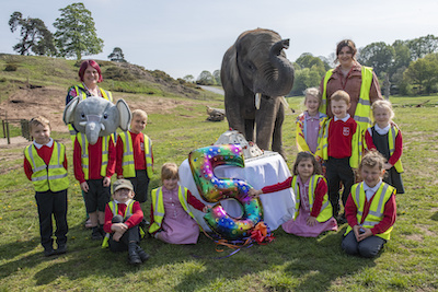 Children from Bewdley Primary School threw Sutton the elephant a birthday party for his fifth birthday.
