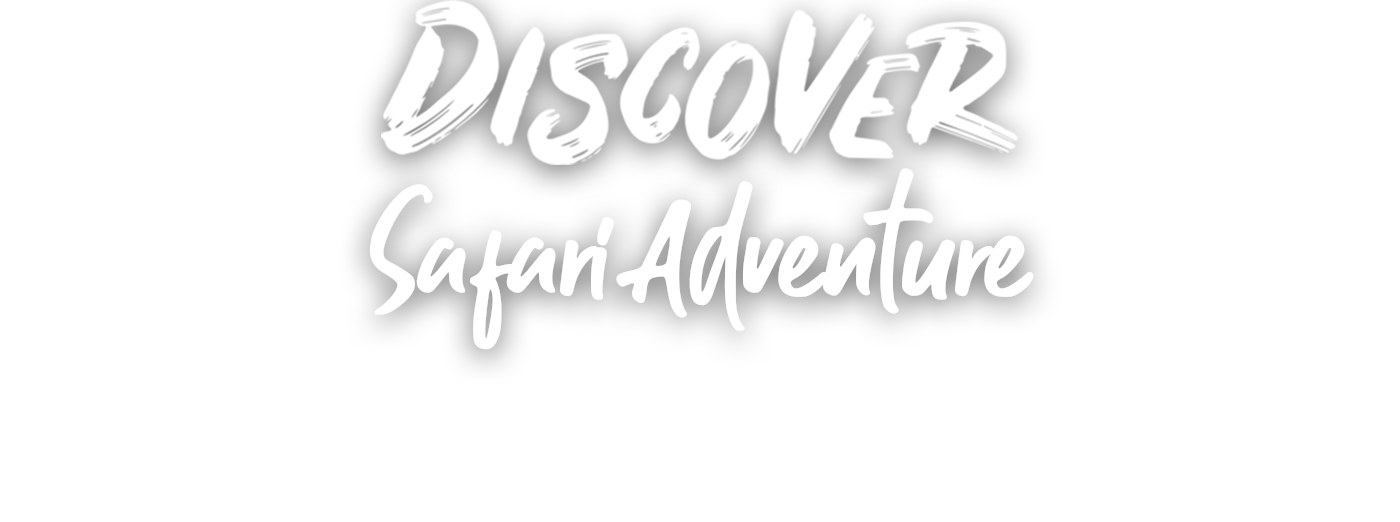 Safari Drive Through West Midland Safari Leisure Park