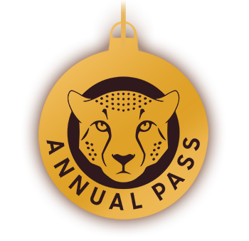 icon-christmas-giftguide-annualpass-350px