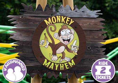 photo-monkey-mayhem-accompanied-600px